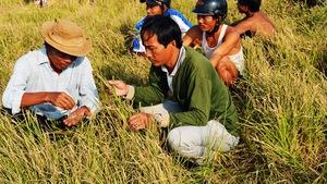 Khuyến khích nông dân giới thiệu nông sản qua mạng xã hội