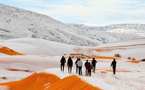 Chuyện khó tin: tuyết rơi phủ trắng sa mạc Sahara