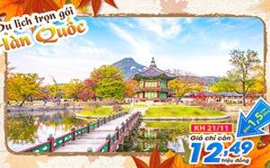Lời khuyên bổ ích khi chọn tour Hàn Quốc
