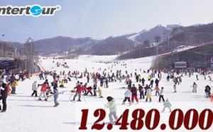 Đi Hàn Quốc mùa đông rẻ bất ngờ