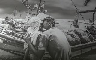 """Ngắm """"Biển trong chúng ta"""" qua triển lãm tại Đà Nẵng"""