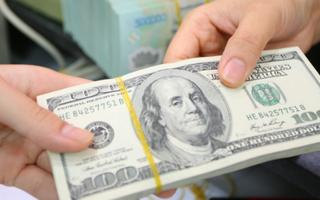 Đổi 100 USD tại tiệm vàng, anh thợ điện bị phạt 90 triệu đồng