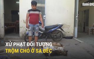 Xử phạt đối tượng trộm chó ở Sa Đéc