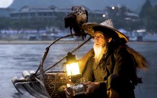 Độc đáo truyền thống bắt cá bằng chim cốc