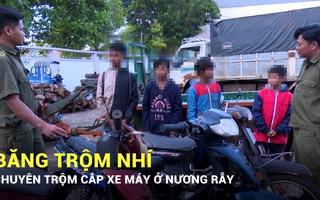 Băng trộm nhí chuyên trộm cắp xe máy ở nương rẫy