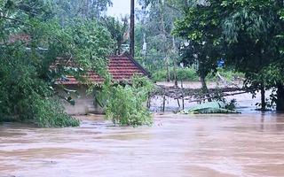 12 người bị thương, 1 người mất tích, gần 600 nhà bị hư hỏng do mưa lũ tại Quảng Ngãi