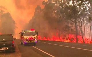 Thảm hóa cháy rừng ở Úc đe dọa hàng triệu người