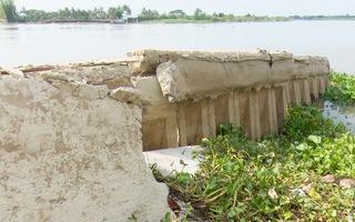 Sạt lở nghiêm trọng khu vực bờ sông Hậu