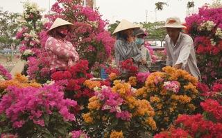 TP.HCM tổ chức 128 chợ hoa Tết