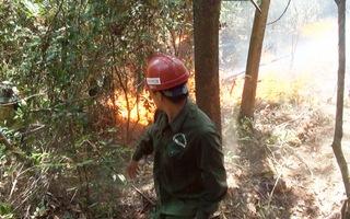 Rừng thông cháy trở lại, Hà Tĩnh di dời dân, bảo vệ trạm xăng