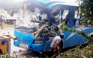 Xe khách tông xe máy rồi tông vào gốc cây, một người chết, nhiều người bị thương