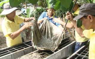 Đội xây cầu từ thiện của những lão nông