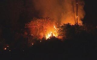Hàng trăm người chữa cháy rừng trong đêm