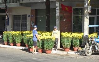 Người trồng hoa, buôn hoa ở Vũng Tàu lo ế ẩm