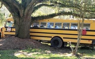 Video: Bé trai 11 tuổi trộm xe buýt gây tai nạn liên tiếp