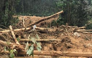 Video: Tan hoang quanh khu vực Trạm bảo vệ rừng 67, nơi 13 người đang mất tích