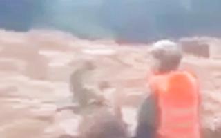 Video: Nhói lòng tiếng gọi 'còn ai không' giữa rừng sâu Rào Trăng