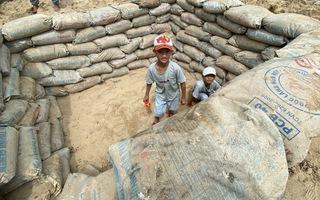 Video: Người dân Quảng Nam đào hầm tránh bão số 9
