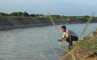 35 năm hồ Dầu Tiếng mở nước - Kỳ 3: Sức sống xanh và những chức năng diệu kỳ