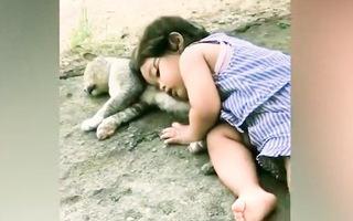 Video: Em bé gối đầu ngủ quên trên chú mèo hoang, cả nhà thảng thốt đi tìm