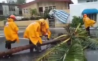 Video: Tàn phá kinh hoàng của siêu bão Goni tại Philippines