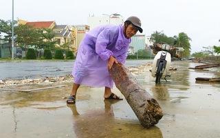 Video: Sau bão, người dân Đà Nẵng rủ nhau ra đường nhặt củi