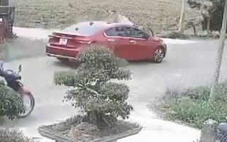 Video: Người đàn ông bị ôtô tông văng xa 5 mét
