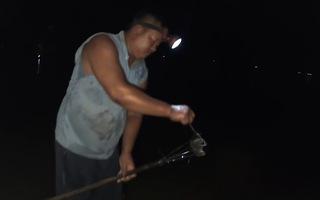 Video: Nửa đêm săn chuột đồng mùa nước nổi