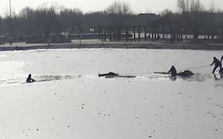Video: Đang chơi trên mặt hồ băng, bé trai bị rớt xuống dưới