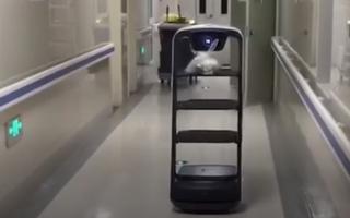 Video: Robot giao đồ ăn cho bệnh nhân ở bệnh viện Trung Quốc thời dịch corona