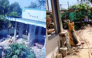 Video: Cận cảnh khu nhà hoang nơi Tuấn 'khỉ' ẩn nấp trước khi bị tiêu diệt