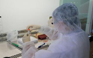 Video: Việt Nam ghi nhận thêm 7 ca COVID-19, nâng tổng số ca nhiễm lên 75