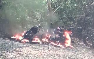 Video: 3 xe máy của cán bộ rừng phòng hộ Bắc Hải Vân bị đốt cháy