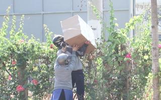 Video: Ném đồ đạc qua hàng rào, bất chấp lệnh ngưng tiếp tế ở khu cách ly