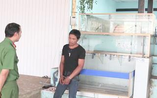 Video: Băng nhóm trộm cắp theo kiểu 'dọn sạch nhà' đã bị bắt
