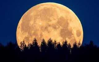 Video: Khoảnh khắc ngắm trăng 'siêu to khổng lồ' cuối cùng của năm 2020