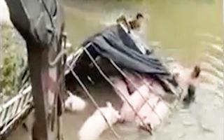 Video: Xe tải chở lợn lao xuống sông