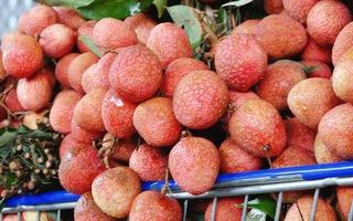 Saigon Co.op lập kỷ lục mỗi giờ bán hơn 1 tấn trái vải trên Momo