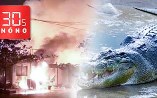 Bản tin 30s Nóng: Đốt nhà trọ 3 người chết; Viết di chúc giao đất cho voi; Thoát chết khi bị cá sấu cắn