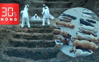 Bản tin 30s Nóng: Khai quật mộ lấy chỗ chôn bệnh nhân; Bắt 2 đối tượng trộm 500kg chó, mèo