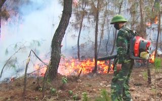 Video: Cả ngàn người chữa cháy rừng trong nắng 40 độ C