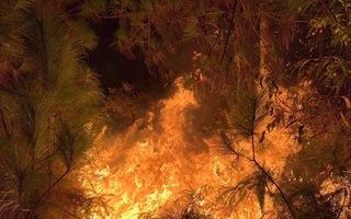 Video: Rừng ở Hà Tĩnh, Nghệ An đang cháy đỏ trời trong đêm