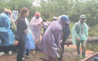 Video: Sạt lở, cây đổ, người dân phải khiêng xe máy trên đèo Prenn, Đà Lạt
