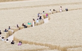 Video: Sàn diễn thời trang giữa cánh đồng lúa mì