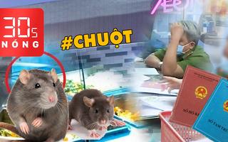 Bản tin 30s Nóng: Xôn xao vụ chuột bò lên khay thức ăn ở AEON Tân Phú; Khi nào 'khai tử' sổ hộ khẩu?