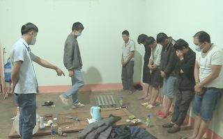 Video: Băng nhóm chuyên ăn trộm chó, dùng ớt bột chống trả người dân và công an