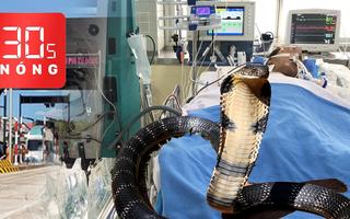 Bản tin 30s Nóng: Sức khỏe người đàn ông bị rắn cắn; Trạm thu phí BOT cầu Đồng Nai tạm dừng thu phí