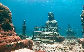 Video: Chiêm ngưỡng tượng Phật phủ rêu xanh dưới đáy đại dương