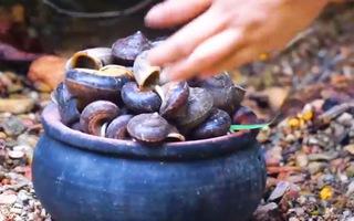 Video: Bắt ốc đá đặc sản ở vùng núi Tuyên Quang