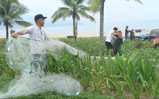 Video: Người dân Đà Nẵng khẩn trương chống bão số 5